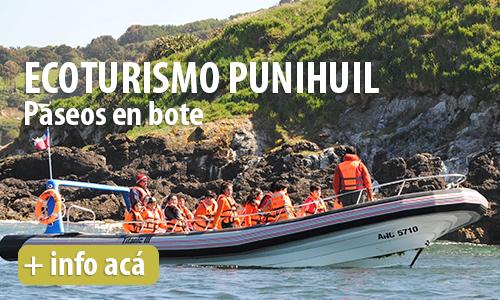 Ecoturismo Puñihuil